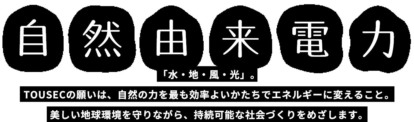 再生 株式 エネルギー 日本 会社 可能